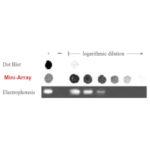 les-limites-repoussées-biocapteur-300x300