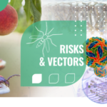 Risk & Vectors - MUSE Montpellier